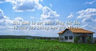danhngongiadinh71 310x165 - Những câu danh ngôn về gia đình hay và ý nghĩa nhất
