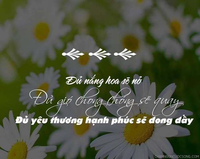 973 - Đủ nắng hoa sẽ nở, đủ gió chong chóng sẽ quay, đủ yêu thương hạnh phúc sẽ đong đầy