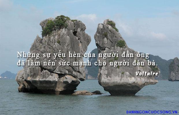 danhngondanong771 - Tổng hợp những câu danh ngôn về phái đẹp nổi tiếng và ý nghĩa nhất