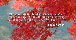 hanhphuc7 310x165 - Hãy sống thật tốt đẹp theo cách bạn muốn, dù người khác có thể cho rằng nó viển vông và những điều tốt đẹp sẽ đến với bạn