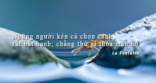 tinhcach46 310x165 - Những người kén cá chọn canh rất bất hạnh; chẳng thứ gì thỏa mãn họ