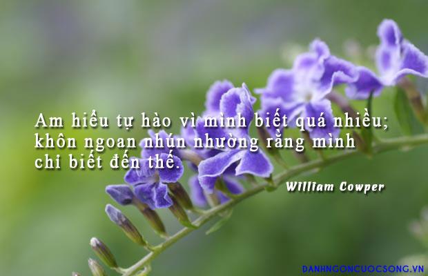 tritue33 - Am hiểu tự hào vì mình biết quá nhiều; khôn ngoan nhún nhường rằng mình chỉ biết đến thế