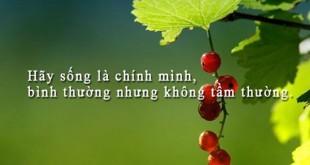 nhung cau tho hay ve cuoc song 2 310x165 - Những câu thơ hay về cuộc sống hay nhất