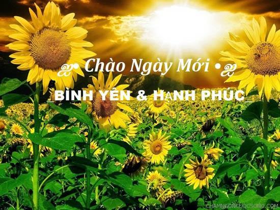 nhung loi chuc buoi sang lang man 2 - Những lời chúc buổi sáng lãng mạn