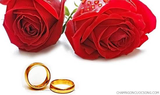 nhung loi chuc dam cuoi 2 - Những lời chúc đám cưới hay và ý nghĩa nhất