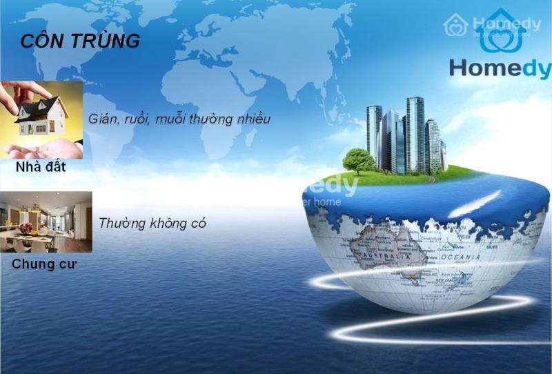 cau hoi khong bao gio cu nen mua chung cu hay nha mat dat tai ha noi 13 - Câu hỏi không bao giờ cũ: Nên mua chung cư hay nhà mặt đất tại Hà Nội?